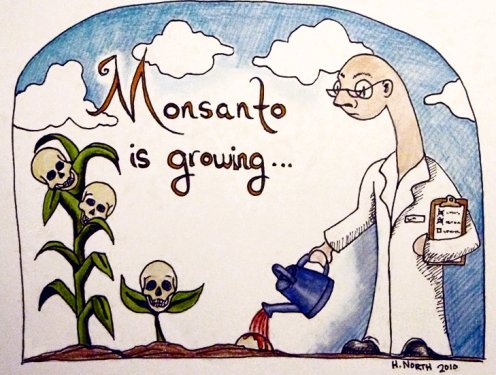 MONSANTO-GROWING