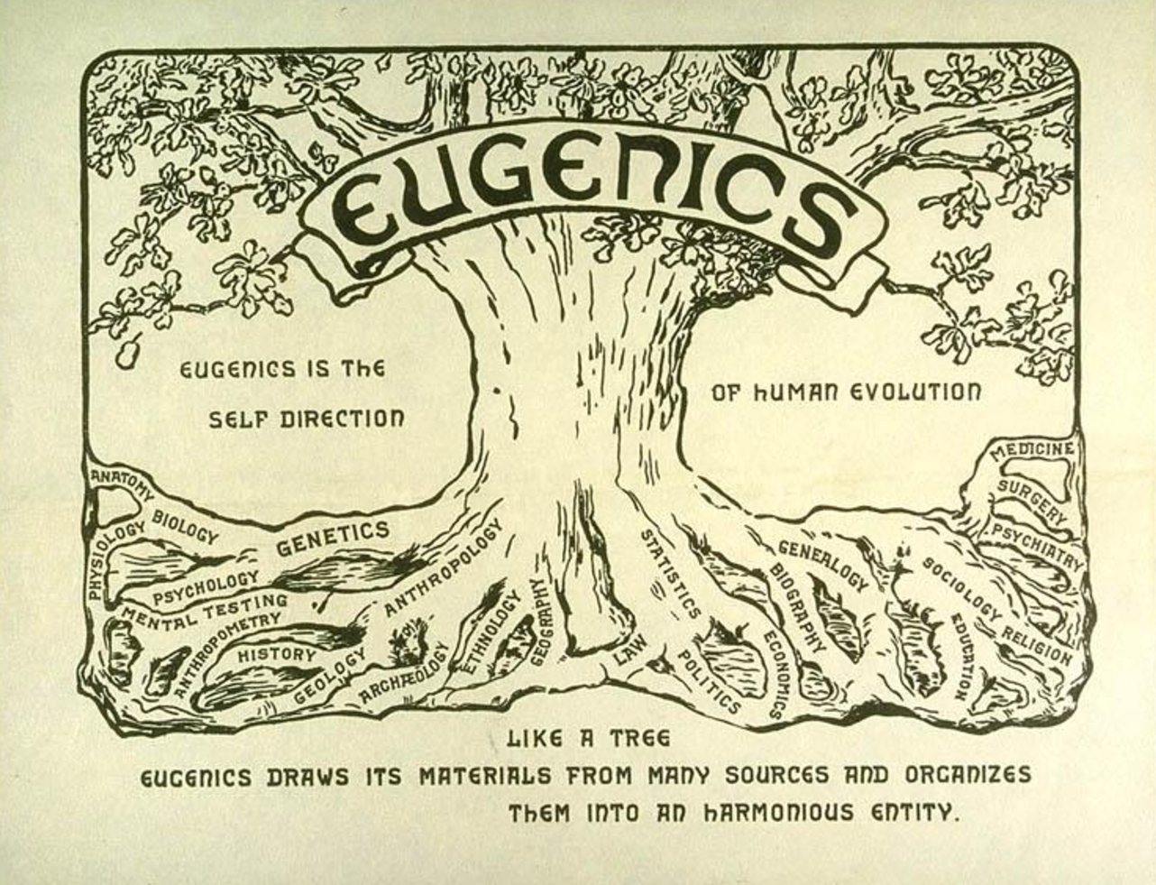 THEY WANT US DEAD !! Eugenics Outlined ! | Anti Oligarch