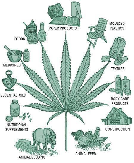 CANNABIS INDUSTRIAL